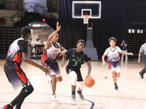AAU, Club and School Basketball